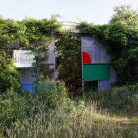 2.-4.11 Permakultur Einführung – Fokus Waldgarten